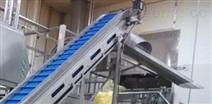食品级网带输送机