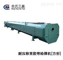 耐壓稱重膠帶給煤機方形