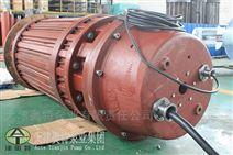 防烧的大功率高压潜水电机选择天津奥特泵业