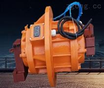 VBL系列立式振動電機