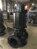 大流量机械密封污水泵厂家雨辰泵业
