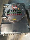 304不锈钢防爆防腐配电箱