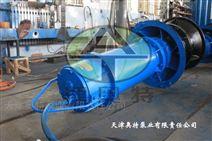无噪音QZB轴流泵_运行稳定无污染潜水泵