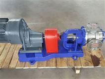 高粘度轉子泵1