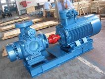 雙螺桿泵1